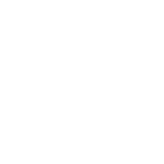 The Jackie Robinson Foundation